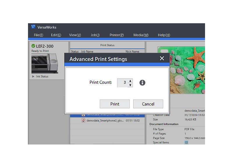 Advanced Print Setting